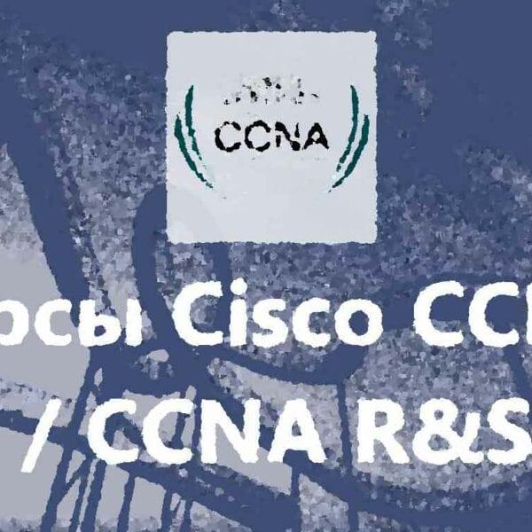 Запись в учебную группу CISCO CCNA, группу академии CISCO