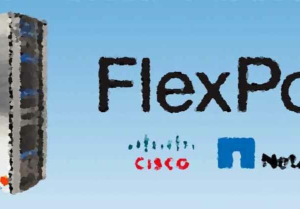 Клиенты Flexpod выделят преимущества для бизнеса