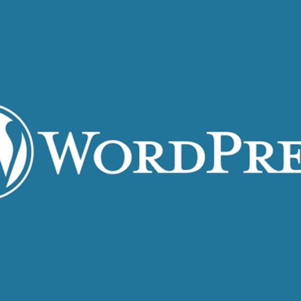 Хакеры используют баг в плагине для WordPress, информационная безопасность вузы магистратура Санкт-Петербург