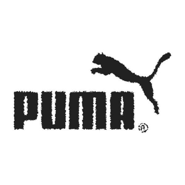 Злоумышленники украли конфиденциальную информацию Puma, информационная безопасность заочное обучение
